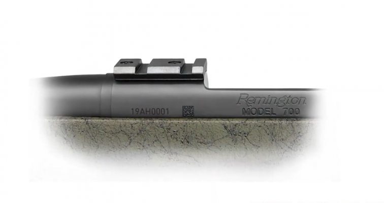 Remington 700 mount