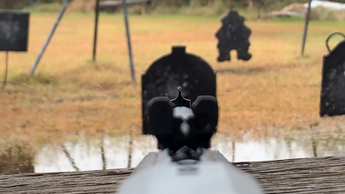Henry Repeating Arms Lever Shotgun sights