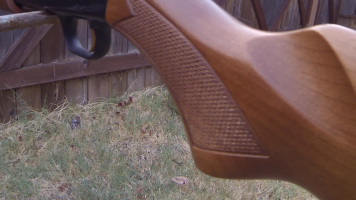 Mossberg 500 Pump-Action Shotgun grip