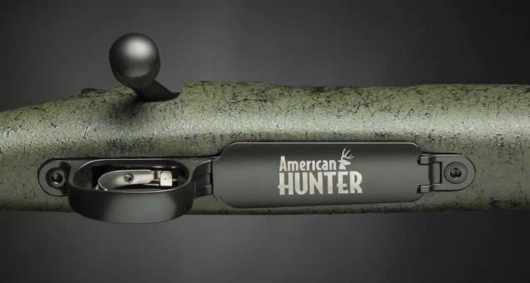 Remington Model 700 Bolt and Trigger