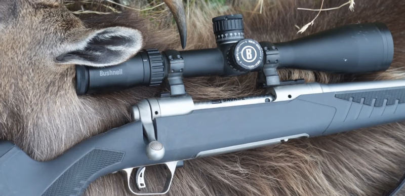 Savage Arms Model 110 Storm Frame